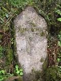 Image for Granite Milestone near Tavistock.