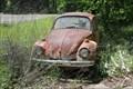 Image for Abandoned Volkswagen Beetle - Starrville, TX