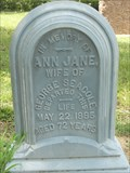 Image for Ann Jane Seacole - Greenwood Cemetery - Eustis, FL