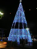 Image for Hamilton City Xmas Tree.   Waikato. New Zealand.