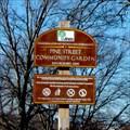 Image for Pine Street Community Garden - Binghamton, NY