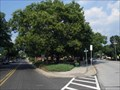 Image for Merchantville, NJ Lucky 7, Part V