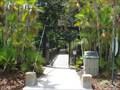 Image for Swamp Walk - Gatorland - Orlando, FL