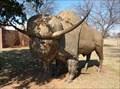 Image for Bison latifrons - Lawton, Oklahoma