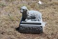 Image for Allen W. Wolfe - Citizens Cemetery - Clarendon, TX