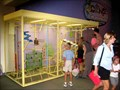 Image for Children's Museum of Indianapolis, Indianapolis, IN