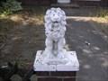 Image for German lion