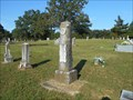 Image for Homer A. Johnson - Six Mile Cemetery - Hatfield, AR