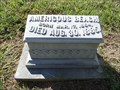 Image for Americous Beach - Sadler Cemetery - Sadler, TX