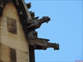 Image for Corpus Christi College Gargoyles - Free School Lane, Cambridge, UK