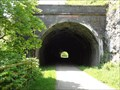 Image for Rusher Cutting Tunnel - Chee Dale, UK