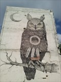 Image for The Owl - Fayetteville AR