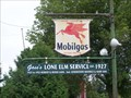 Image for Gass's Lone Elm Service - Imlay City, MI