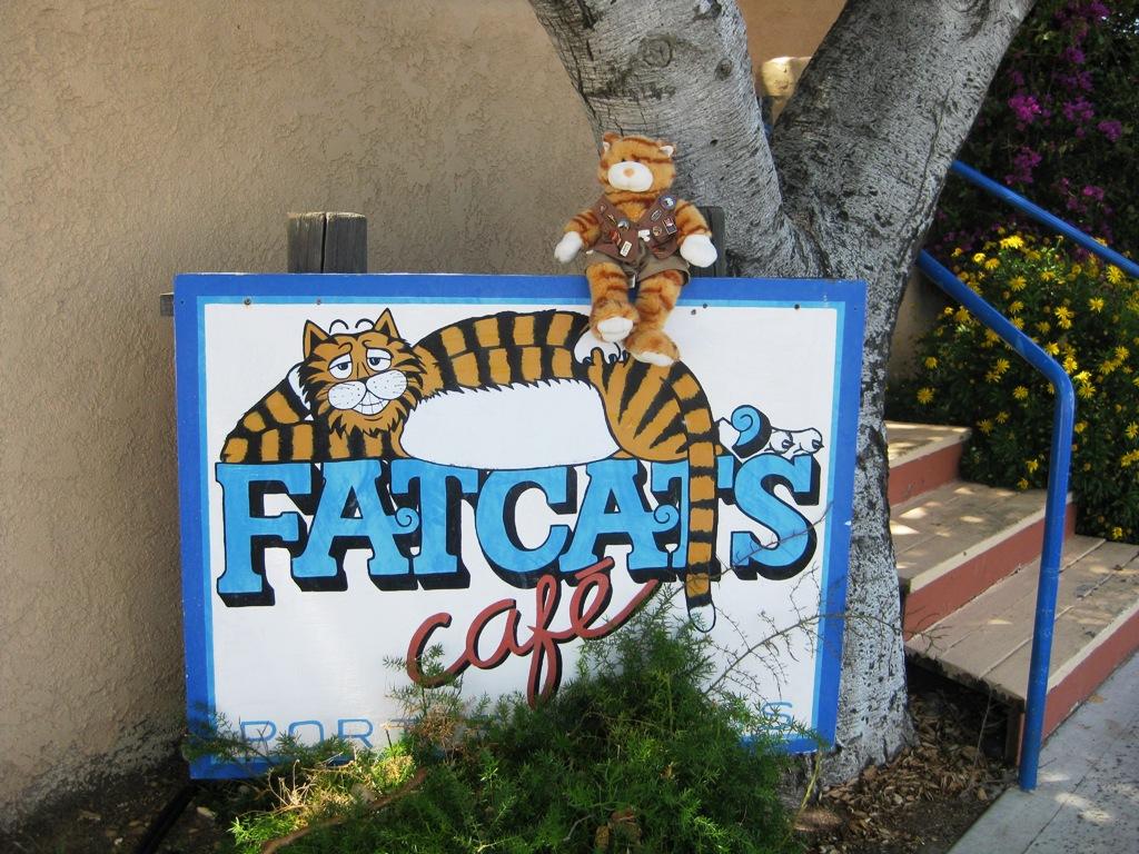 Fat Cat Cafe Fat Cats Cafe Avila Beach ca