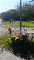 Image for Jeffrey P. Donnelly Bike - Los Altos Hills, CA