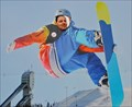 Image for Snowboarder - Calgary, Alberta, Canada