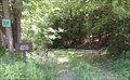 Image for Trail to Mud Lake - Robert V. Riddell State Park, Davenport, NY