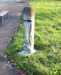 Image for Moai Head - Wyhlen, BW, Germany
