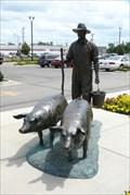 Image for Spam Museum Pig Farmer - Austin, MN