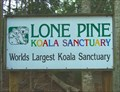 Image for Lone Pine Sanctuary. Brisbane. Australia.