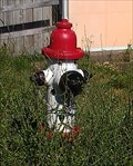 Image for Dalmation Fire Hydrant - Paoli, IN