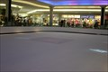 Image for The Ice Palace - Montgomery, AL