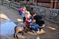 Image for Detská ZOO / Children's ZOO - ZOO Praha (Czech Republic)