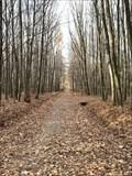 Image for Mestský les Dulnák - Vratimov, Czech republic