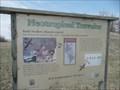 Image for Bank Swallows - Mound City MO