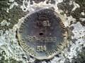 Image for British Columbia Control Survey 80H2598, Aldergrove