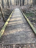 Image for Hemlock Crossing Footbridge #2 - West Olive, Michigan