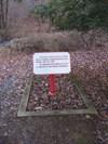 General Braddock's original grave on the trail he blazed.