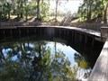 Image for Branford Spring - Swimming Hole - Ivey Memorial Park, Florida, USA.