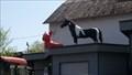 Image for Hund und Pferd auf dem Dach - Linkenbach - RLP - Germany