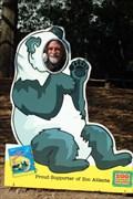 Image for Zoo Atlanta Panda cutout - Atlanta Georgia