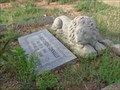 Image for Lion at the Grave of Charles Eugene Connally - White's Chapel Cemetery - Southlake, TX