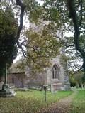 Image for St John the Baptist - Upton Bishop, Herefordshire