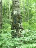 Image for Shoe Tree - Chalk River Ontario