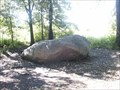 Image for You Are Here: the Big Rock at Morton Arboretum
