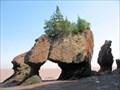 Image for Hopewell Cape Flower Pot Rocks