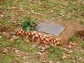 Image for Bomb Disposal Memorial - Coventry, UK