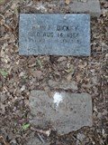 Image for FIRST Burial in Rose Hill Cemetery - Terrell, TX