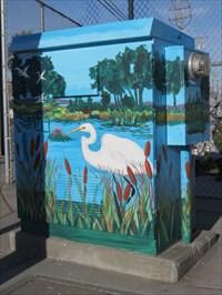 Slough Birds, Sunlit Sides, Watsonville, CA
