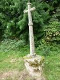 Image for Cross, St Peter & St Paul, Eye, Herefordshire, England