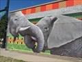 Image for Elephants - Denver, CO, USA