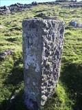 Image for The Bedford Stones, Roos Tor, North Dartmoor, Devon.
