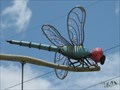 Image for Dragonfly - Columbia, SC