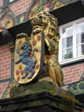 Image for Celle Lion