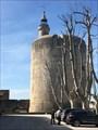 Image for La citadelle d'Aigues Mortes - France