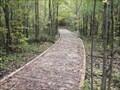 Image for Chemin de planches non côtier - Bois de l'Équerre, Laval, Québec